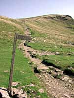 looking up the path to pen-y-ghent